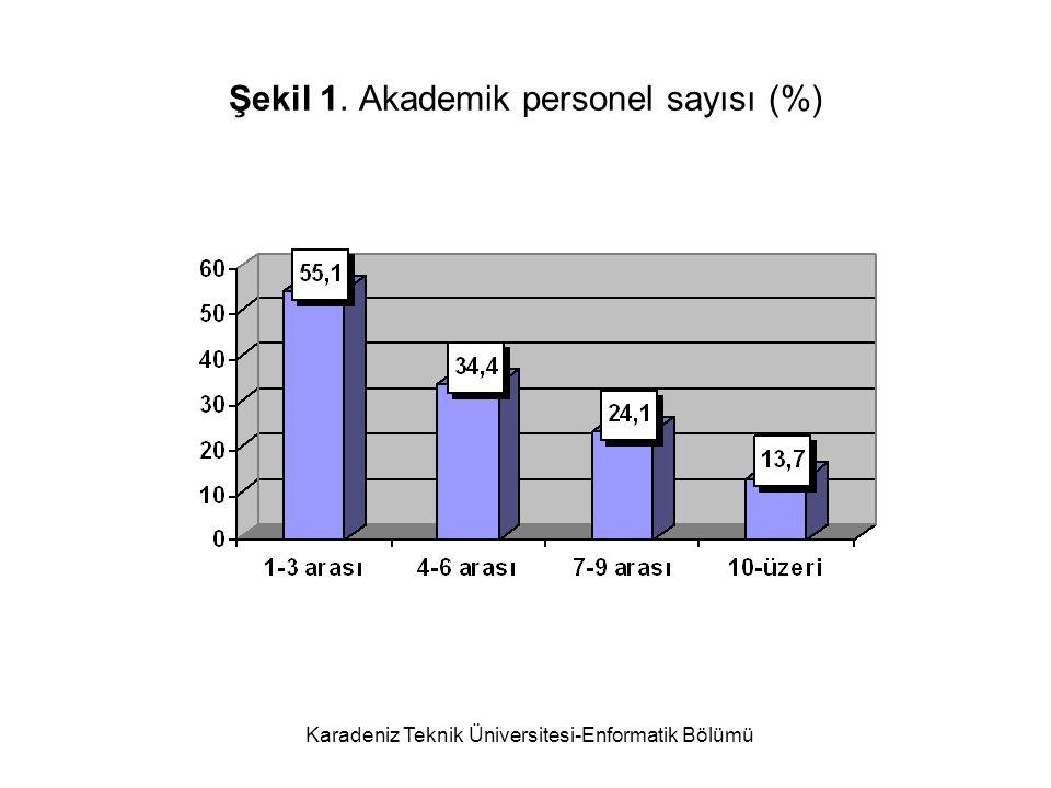 Şekil 1. Akademik personel sayısı (%)