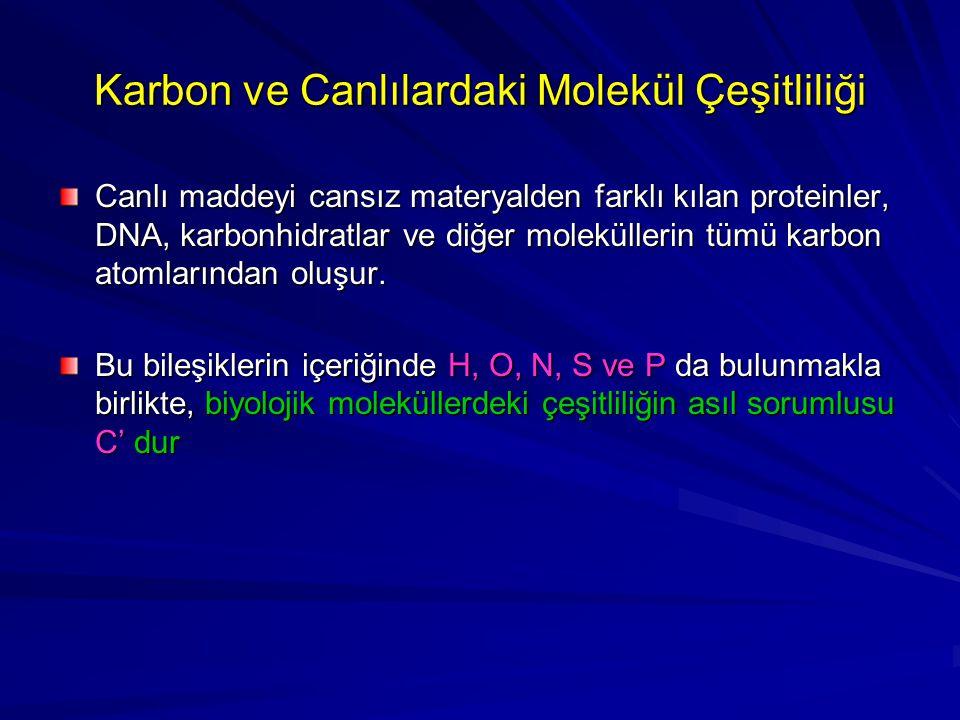 Karbon ve Canlılardaki Molekül Çeşitliliği