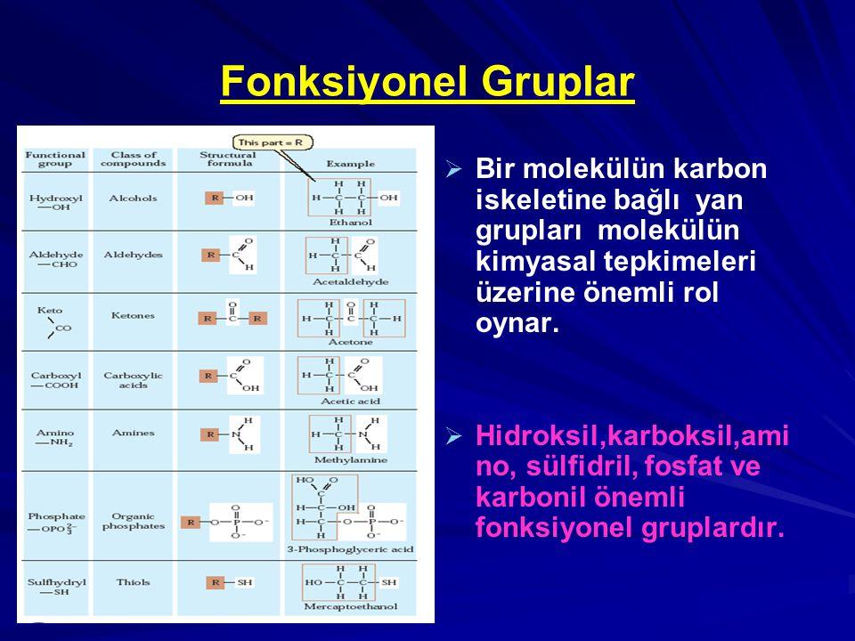 Fonksiyonel Gruplar Bir molekülün karbon iskeletine bağlı yan grupları molekülün kimyasal tepkimeleri üzerine önemli rol oynar.
