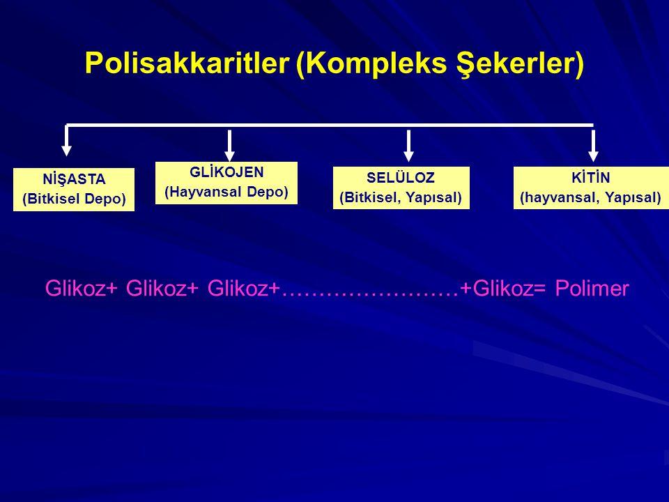 Polisakkaritler (Kompleks Şekerler)