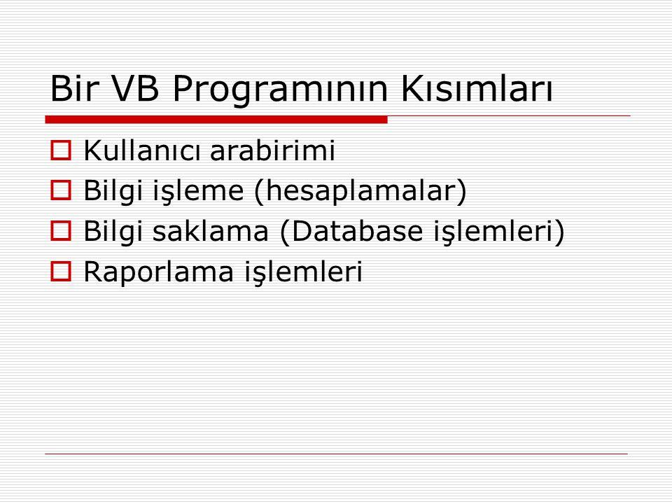 Bir VB Programının Kısımları