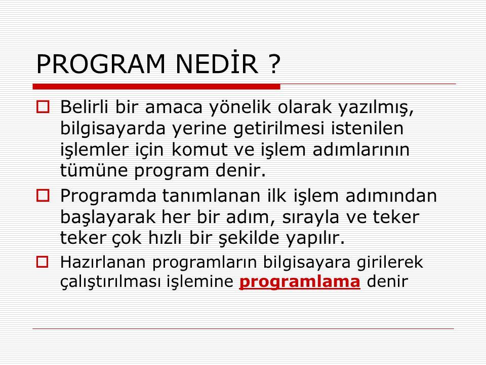 PROGRAM NEDİR