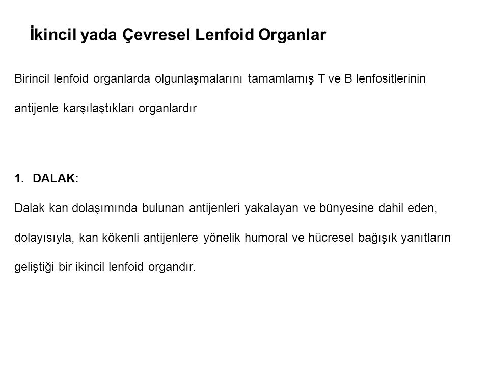 İkincil yada Çevresel Lenfoid Organlar
