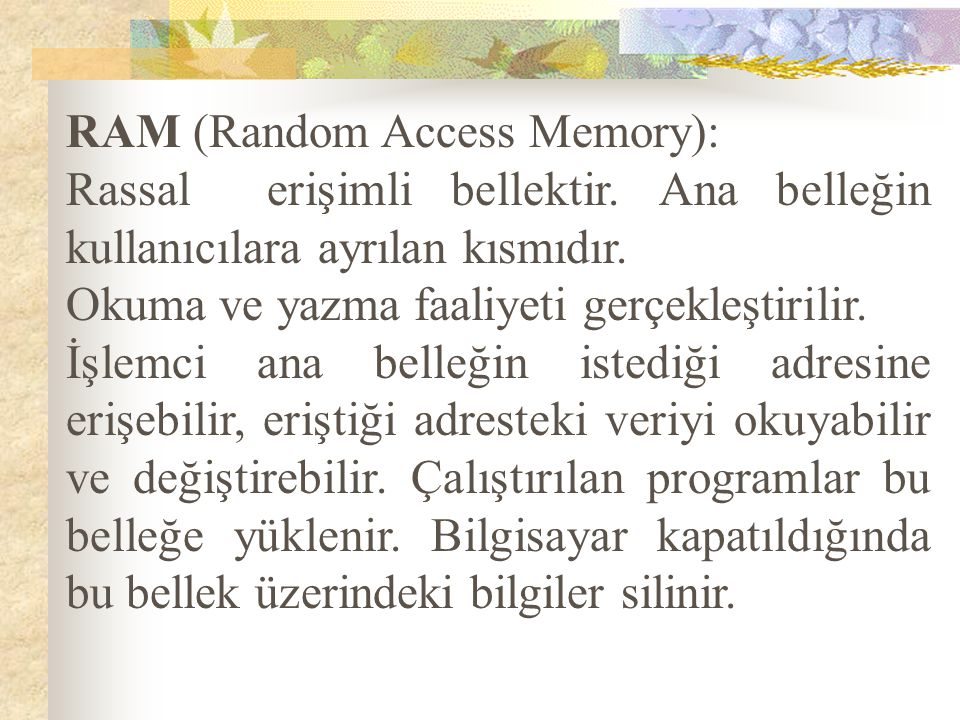 RAM (Random Access Memory):