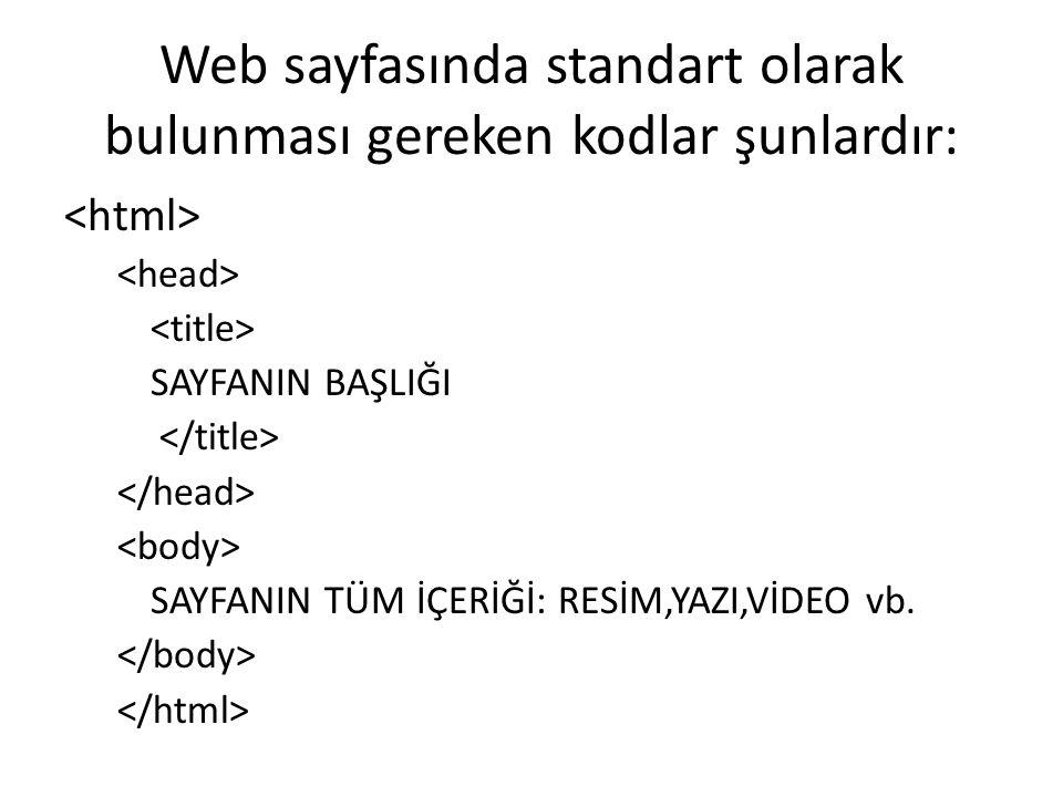 Web sayfasında standart olarak bulunması gereken kodlar şunlardır: