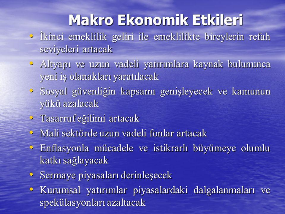 Makro Ekonomik Etkileri
