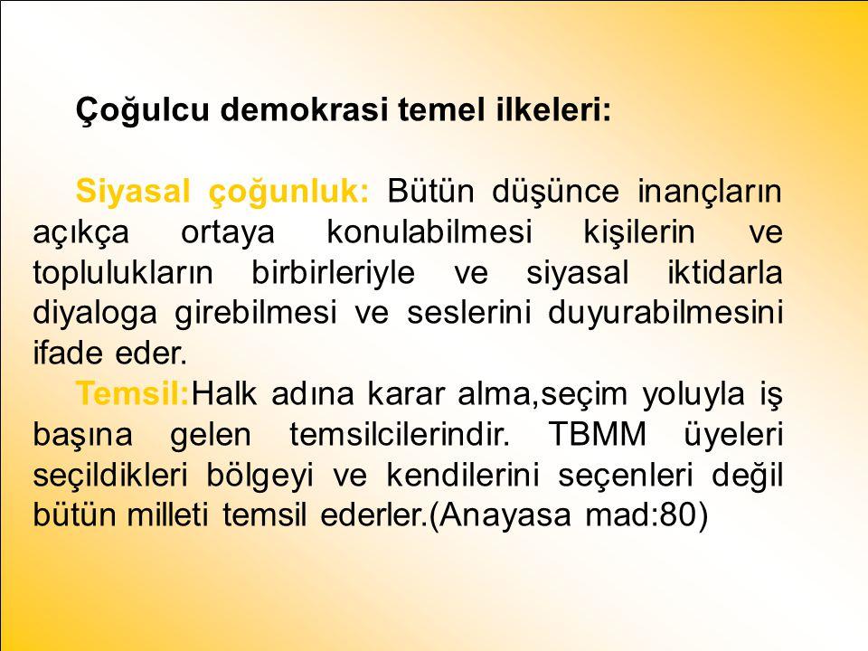 Çoğulcu demokrasi temel ilkeleri: