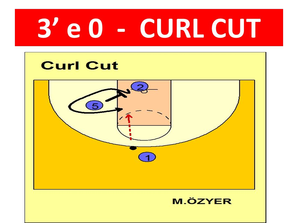 3' e 0 - CURL CUT