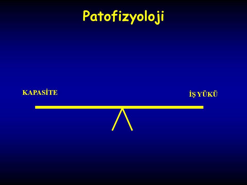 Patofizyoloji KAPASİTE İŞ YÜKÜ