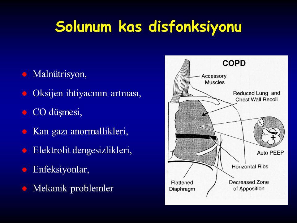 Solunum kas disfonksiyonu