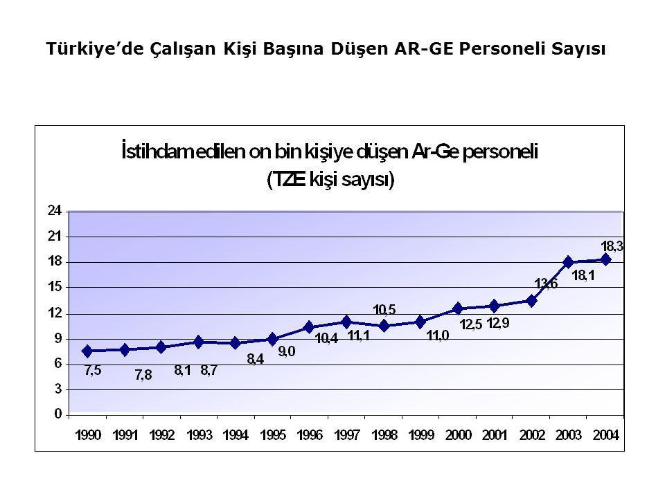 Türkiye'de Çalışan Kişi Başına Düşen AR-GE Personeli Sayısı