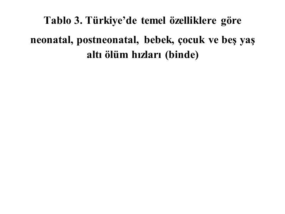 Tablo 3.