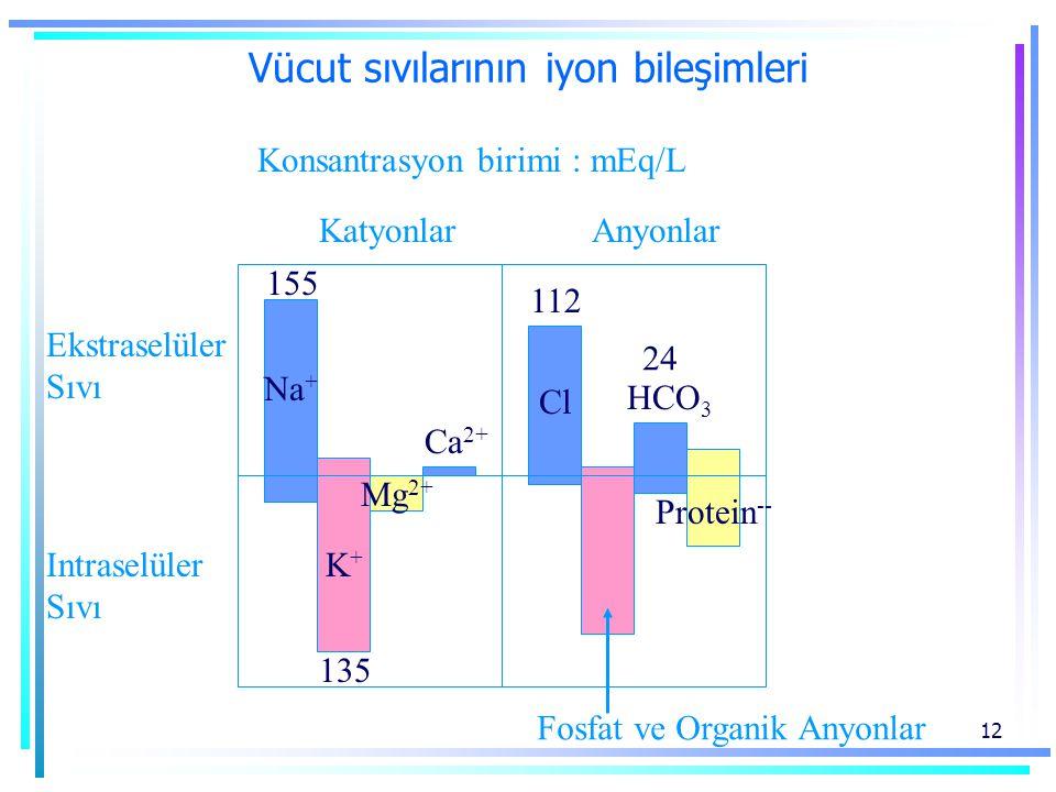 Vücut sıvılarının iyon bileşimleri