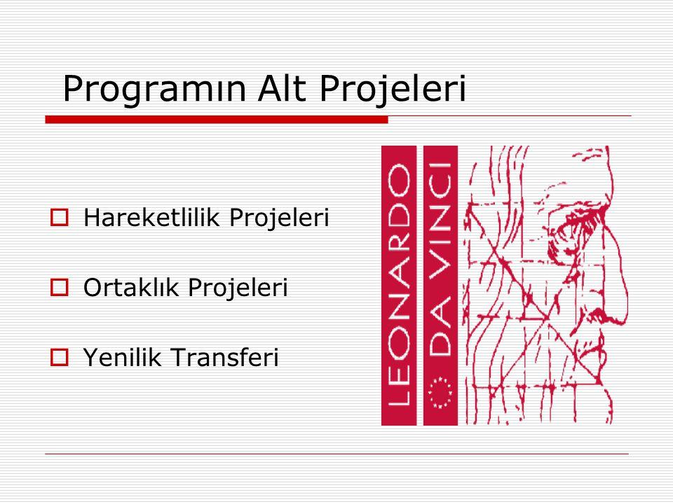 Programın Alt Projeleri