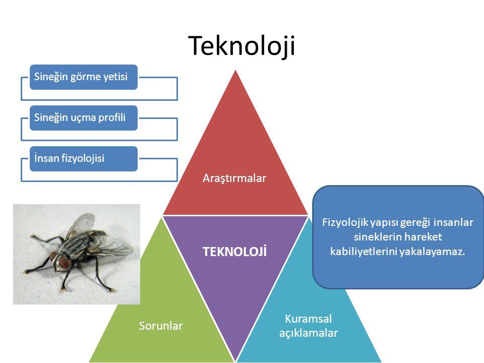 Teknoloji Sineğin görme yetisi. Sineğin uçma profili. İnsan fizyolojisi. Araştırmalar. Sorunlar.