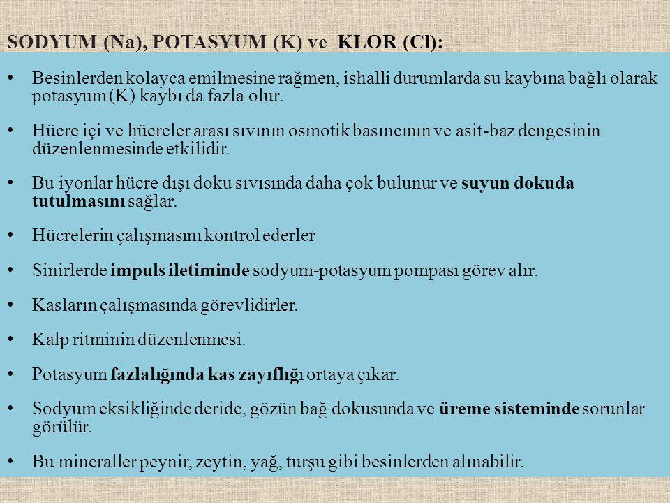 SODYUM (Na), POTASYUM (K) ve KLOR (Cl):