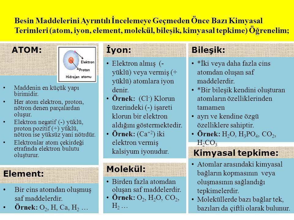 Besin Maddelerini Ayrıntılı İncelemeye Geçmeden Önce Bazı Kimyasal Terimleri (atom, iyon, element, molekül, bileşik, kimyasal tepkime) Öğrenelim;