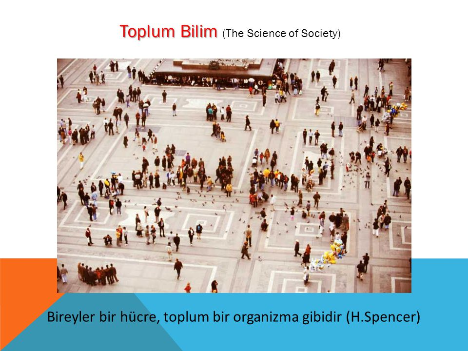 Toplum Bilim (The Science of Society)