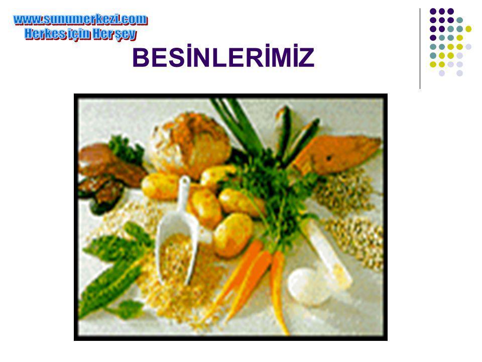 BESİNLERİMİZ www.sunumerkezi.com Herkes için Her şey
