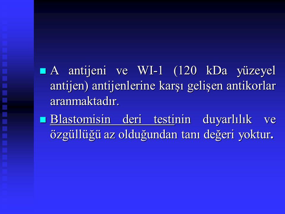 A antijeni ve WI-1 (120 kDa yüzeyel antijen) antijenlerine karşı gelişen antikorlar aranmaktadır.