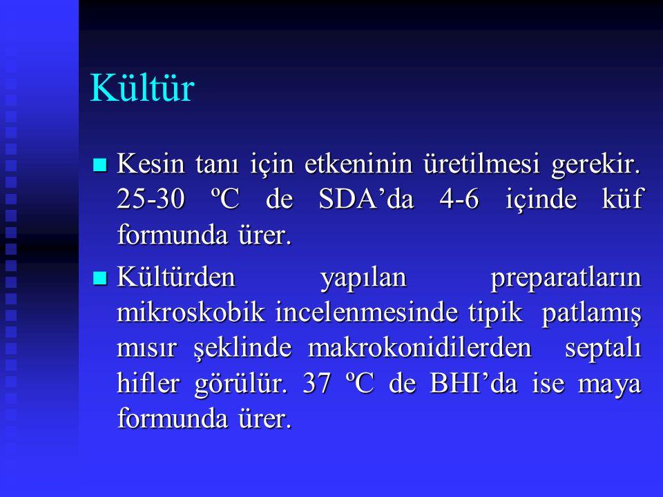 Kültür Kesin tanı için etkeninin üretilmesi gerekir. 25-30 ºC de SDA'da 4-6 içinde küf formunda ürer.