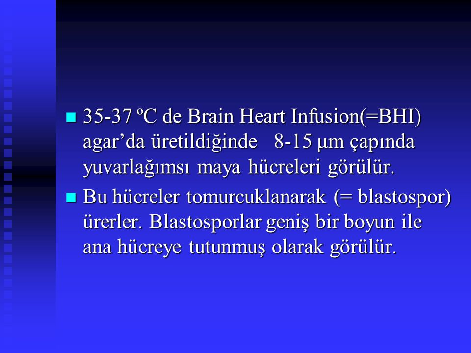 35-37 ºC de Brain Heart Infusion(=BHI) agar'da üretildiğinde 8-15 μm çapında yuvarlağımsı maya hücreleri görülür.