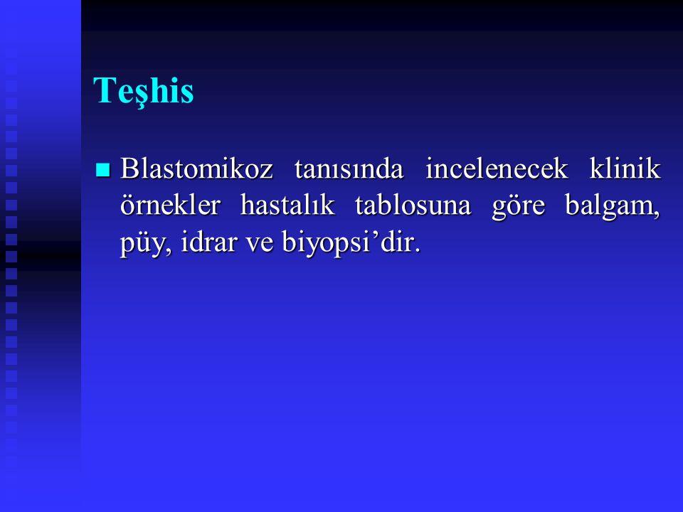 Teşhis Blastomikoz tanısında incelenecek klinik örnekler hastalık tablosuna göre balgam, püy, idrar ve biyopsi'dir.