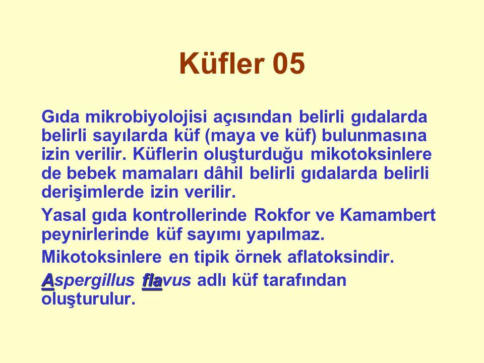 Küfler 05