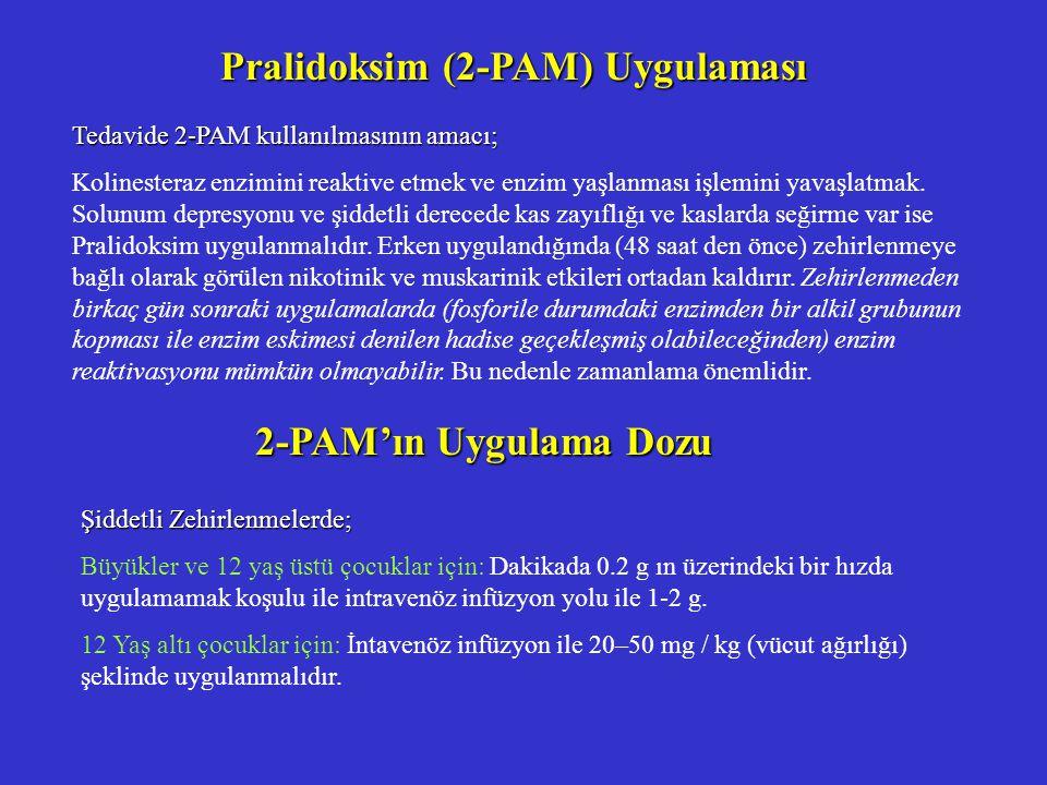Pralidoksim (2-PAM) Uygulaması
