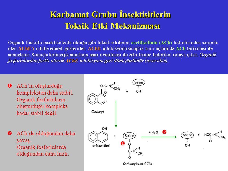 Karbamat Grubu İnsektisitlerin Toksik Etki Mekanizması