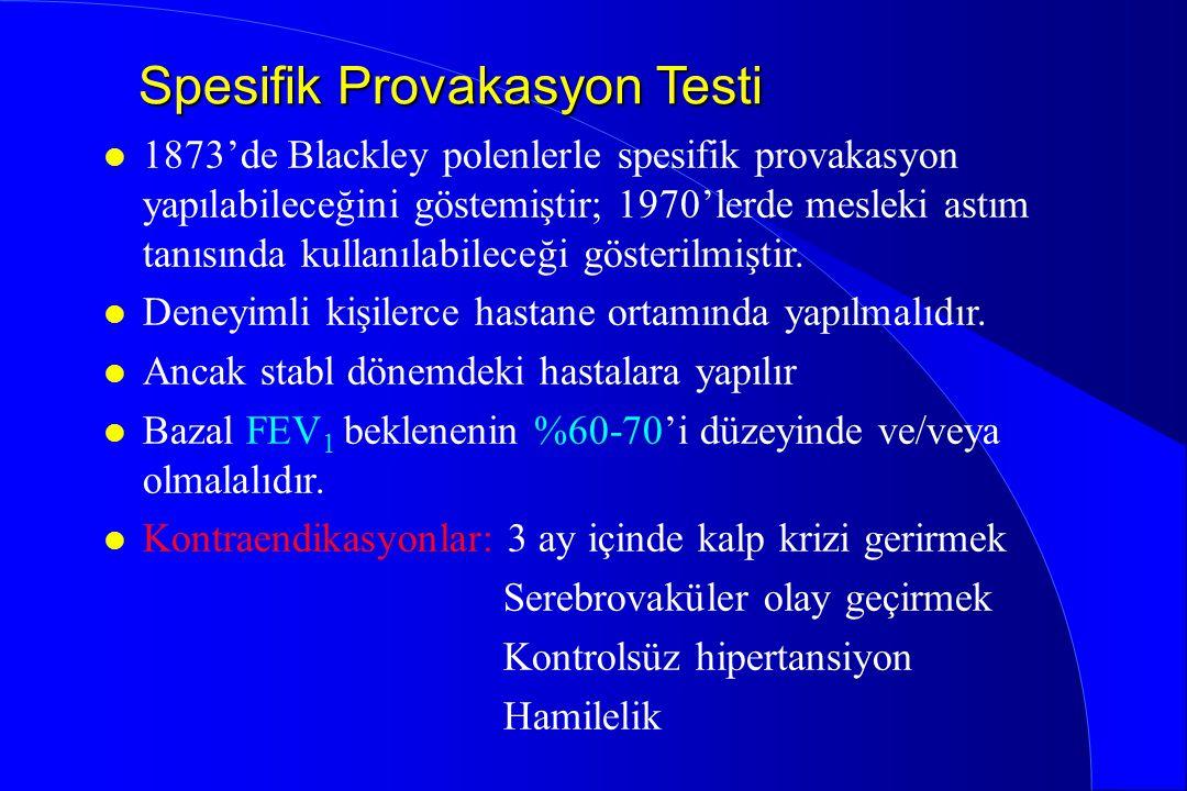 Spesifik Provakasyon Testi