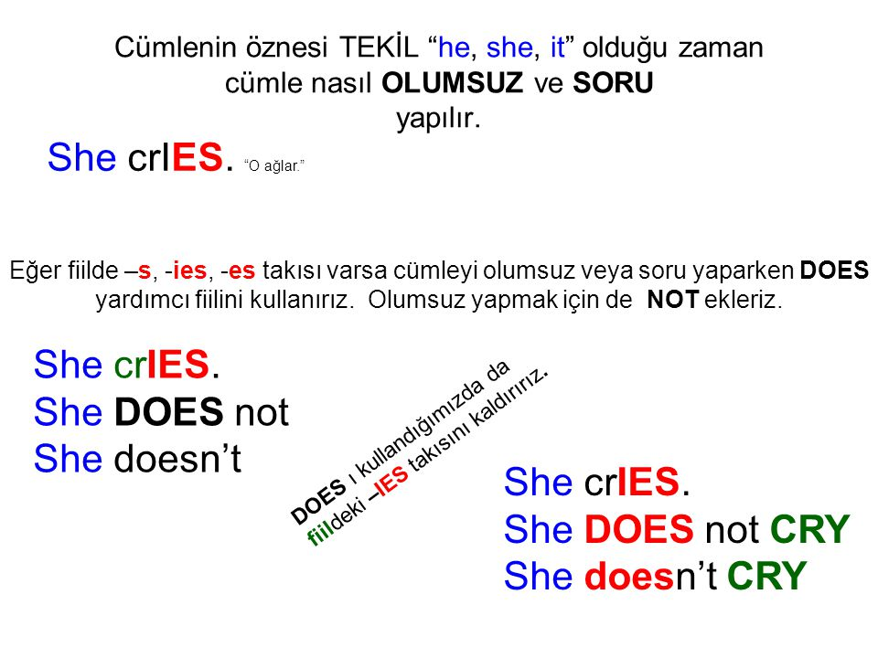 She crIES. O ağlar. She crIES. She DOES not She doesn't She crIES.