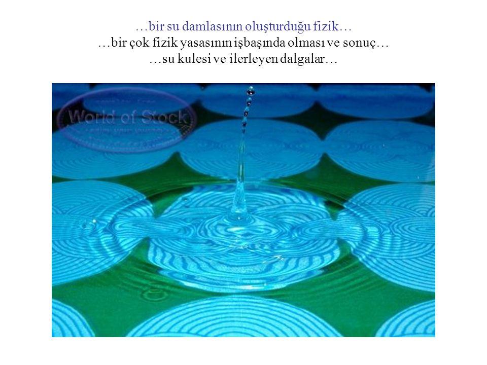 …bir su damlasının oluşturduğu fizik… …bir çok fizik yasasının işbaşında olması ve sonuç… …su kulesi ve ilerleyen dalgalar…