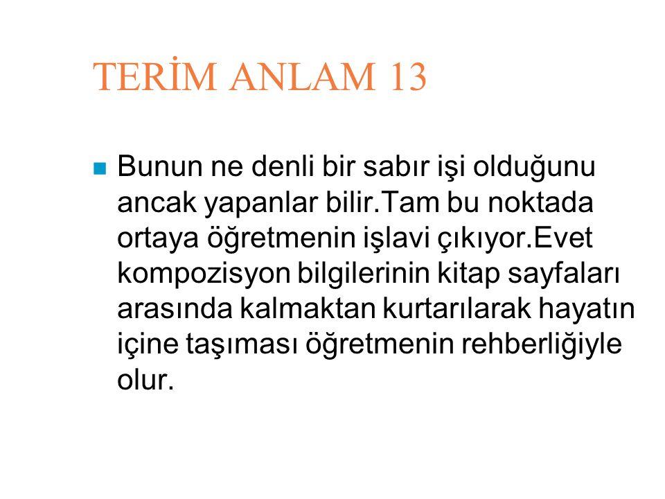 TERİM ANLAM 13
