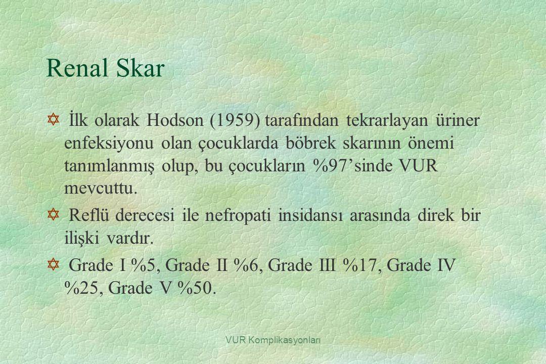 Renal Skar
