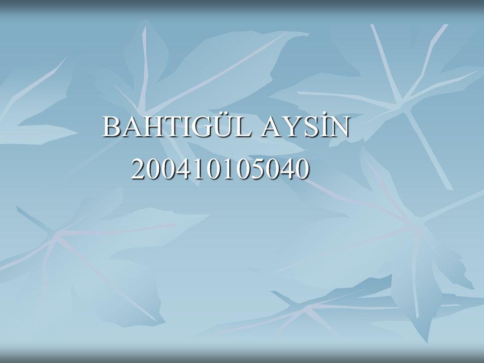 BAHTIGÜL AYSİN 200410105040