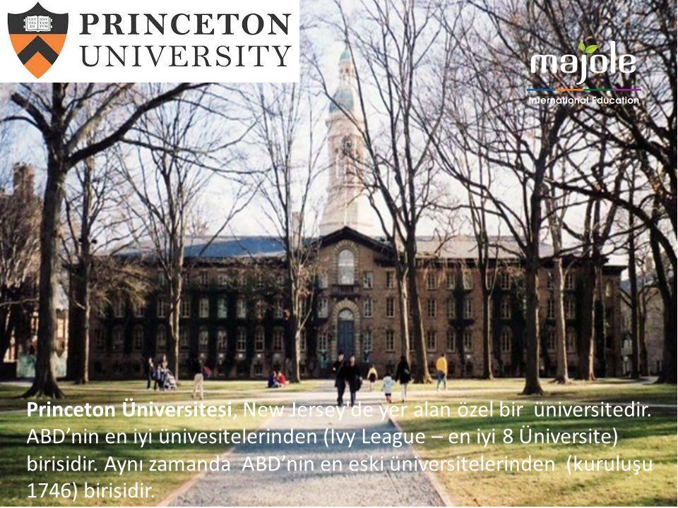 Princeton Üniversitesi, New Jersey de yer alan özel bir üniversitedir