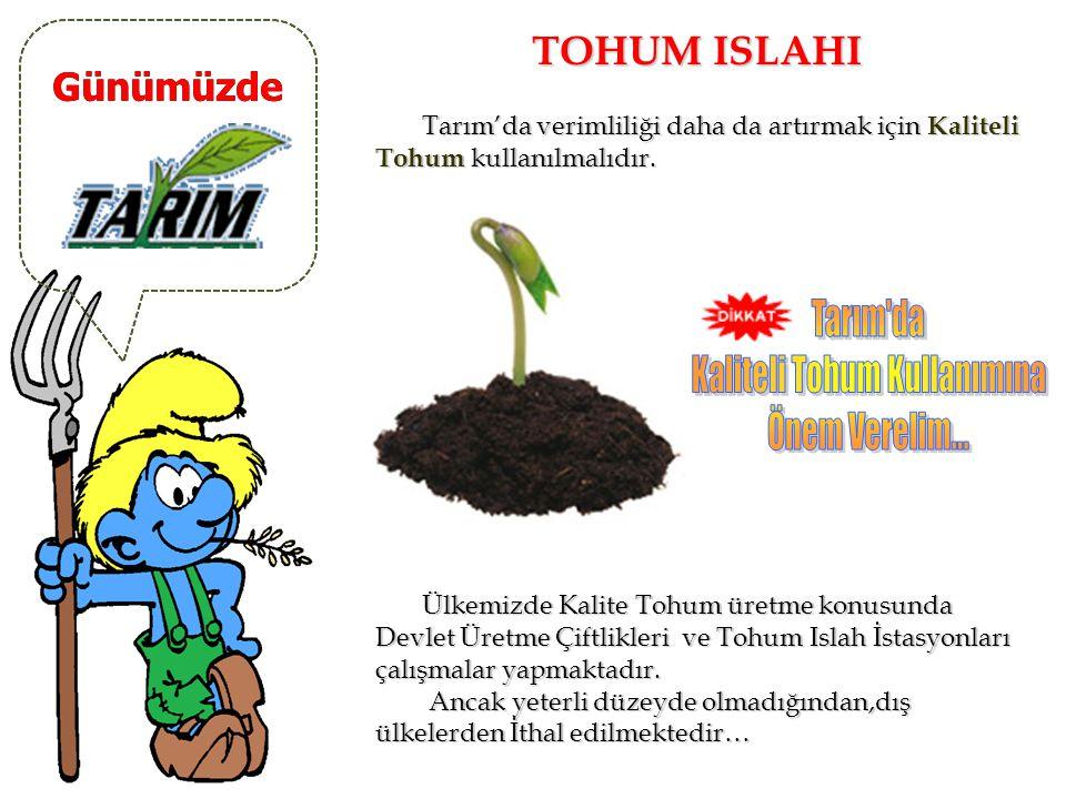 Kaliteli Tohum Kullanımına