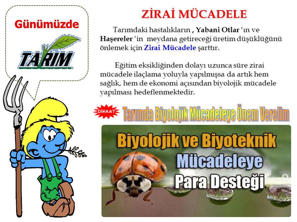 Tarımda Biyolojik Mücadeleye Önem Verelim