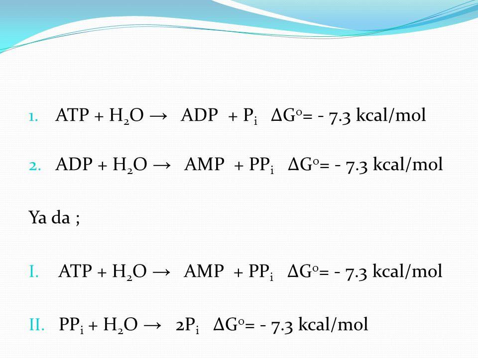 ATP + H2O → ADP + Pi ∆Go= - 7.3 kcal/mol