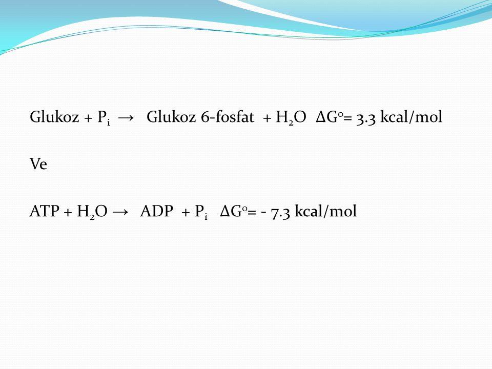 Glukoz + Pi → Glukoz 6-fosfat + H2O ∆Go= 3