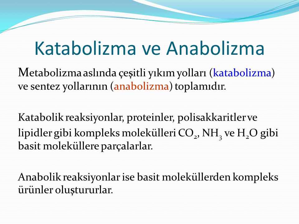 Katabolizma ve Anabolizma