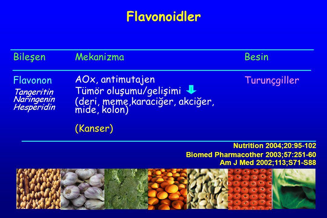 Flavonoidler Bileşen Flavonon Mekanizma AOx, antimutajen