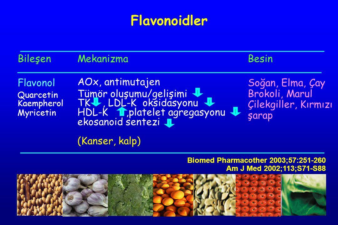 Flavonoidler Bileşen Flavonol Mekanizma AOx, antimutajen