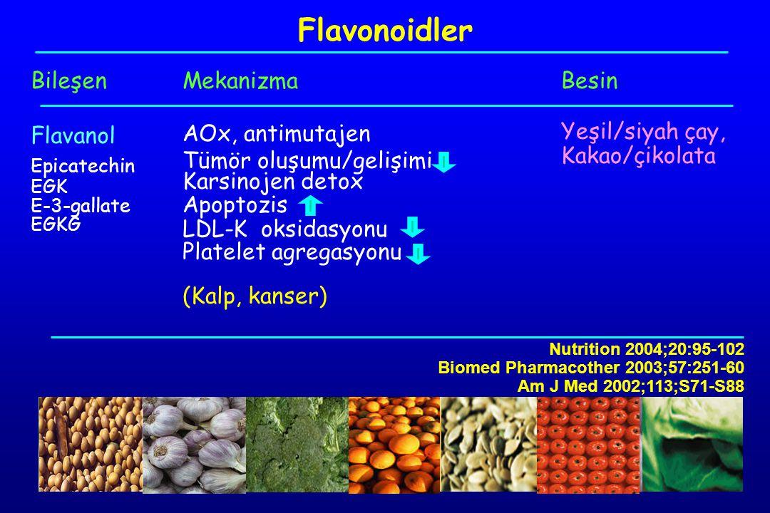Flavonoidler Bileşen Flavanol Mekanizma AOx, antimutajen