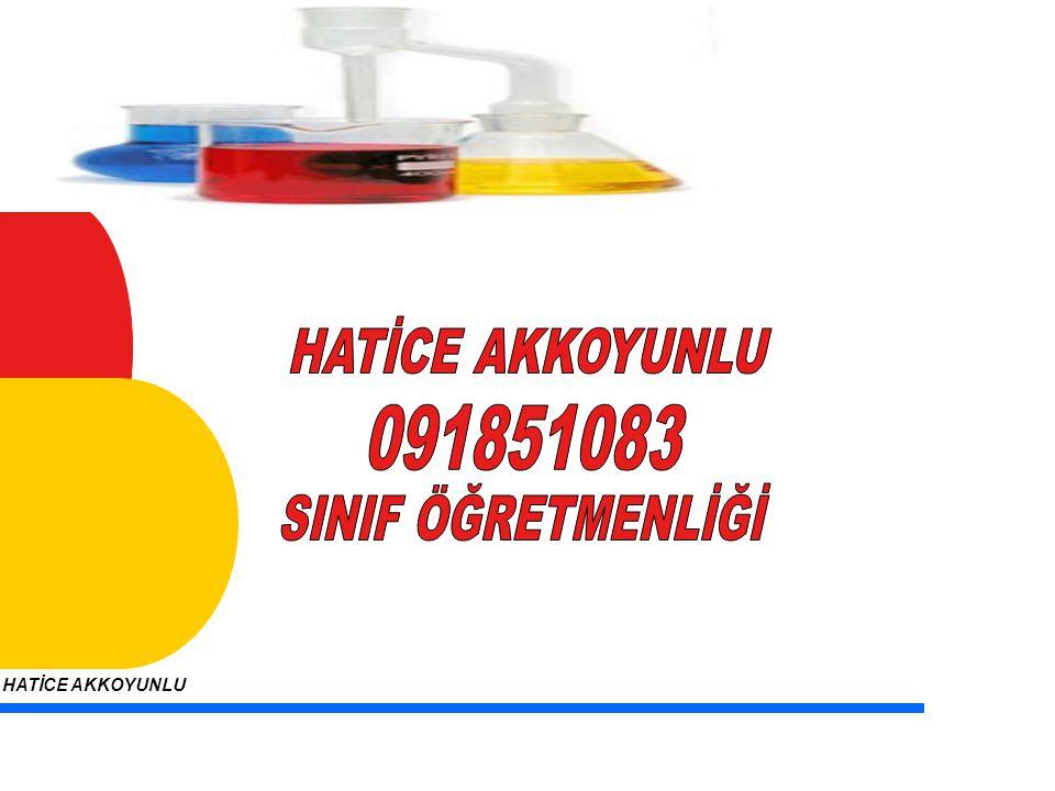 HATİCE AKKOYUNLU 091851083 SINIF ÖĞRETMENLİĞİ HATİCE AKKOYUNLU