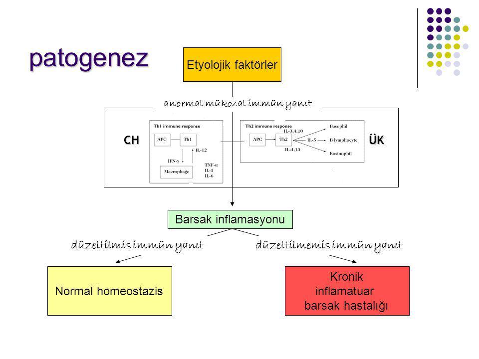 patogenez Etyolojik faktörler CH ÜK Barsak inflamasyonu
