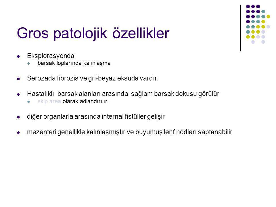 Gros patolojik özellikler