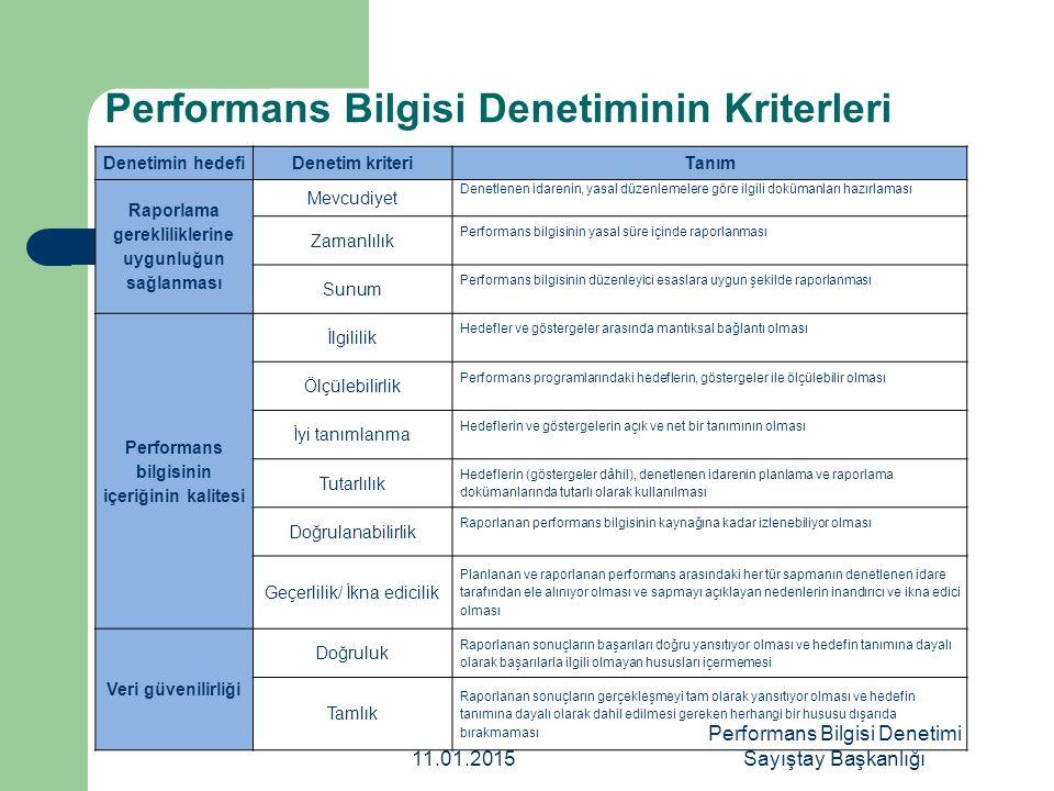 Performans Bilgisi Denetiminin Kriterleri