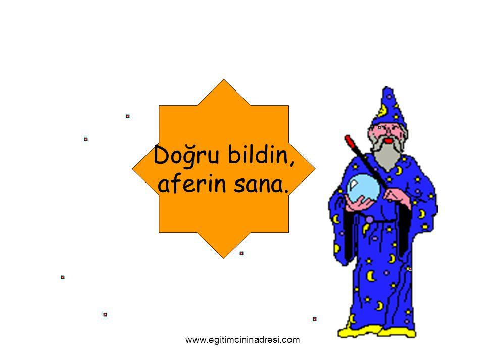 Doğru bildin, aferin sana. www.egitimcininadresi.com